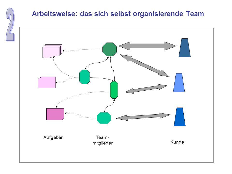 Arbeitsweise: das sich selbst organisierende Team