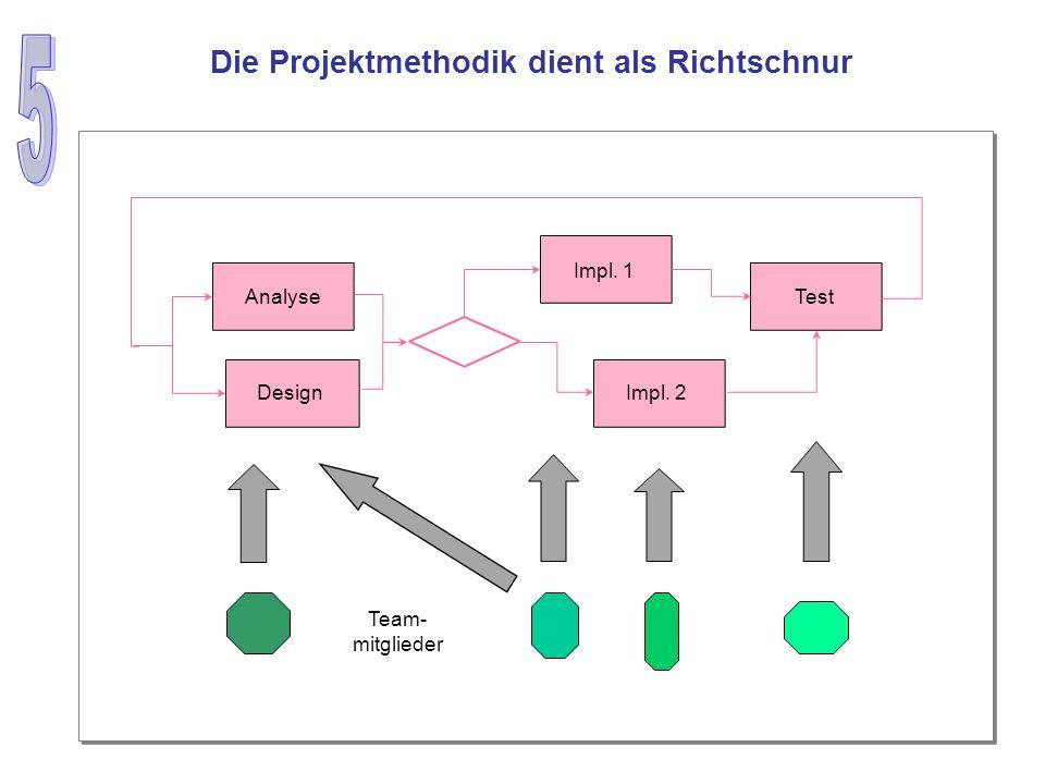 Die Projektmethodik dient als Richtschnur