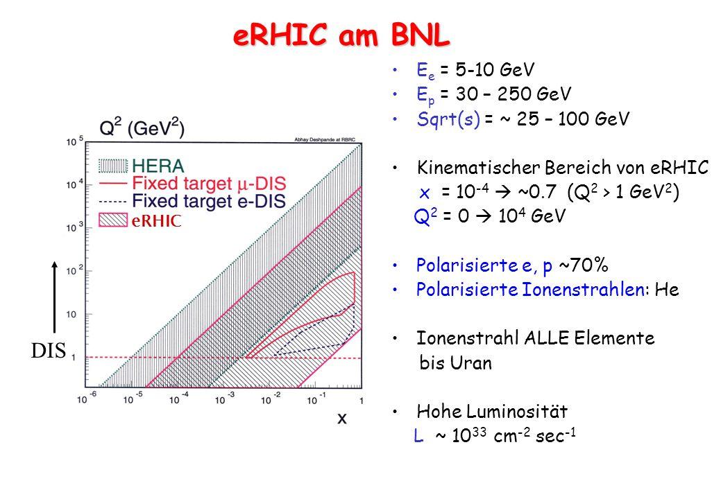 eRHIC am BNL DIS Ee = 5-10 GeV Ep = 30 – 250 GeV