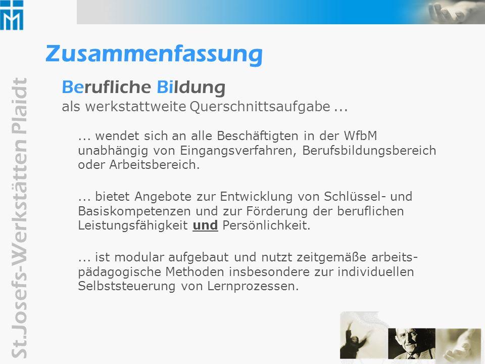 ZusammenfassungBerufliche Bildung als werkstattweite Querschnittsaufgabe ...