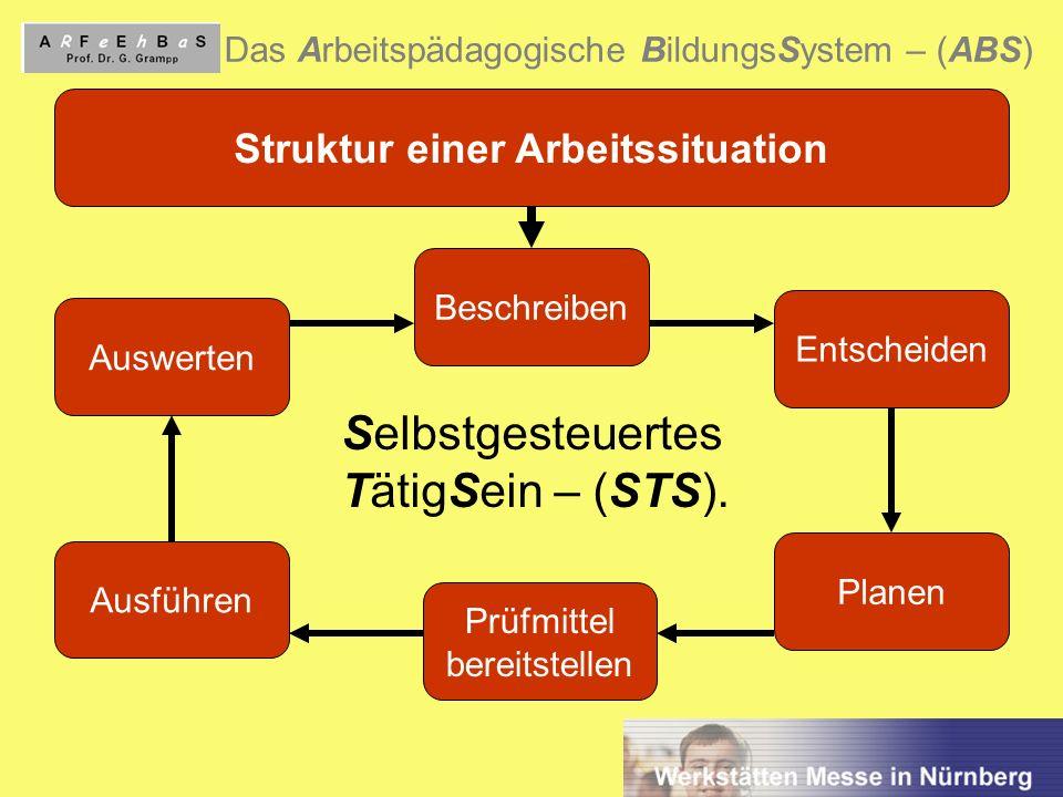 Struktur einer Arbeitssituation