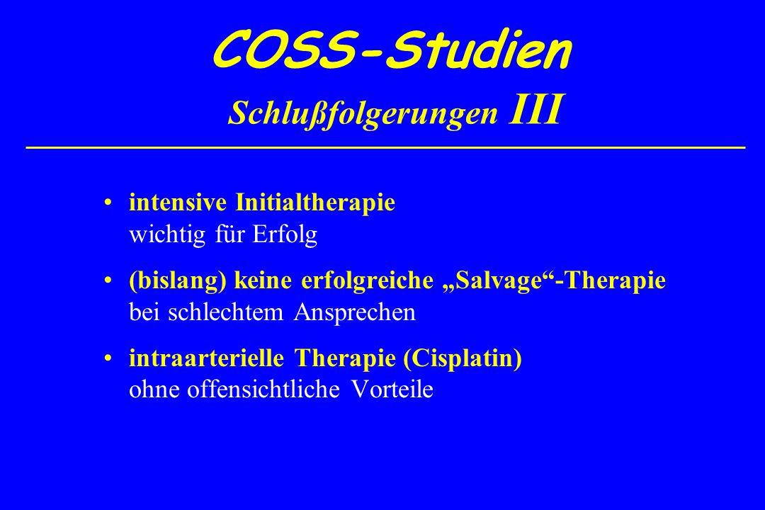 COSS-Studien Schlußfolgerungen III