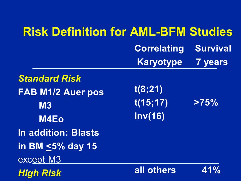 Risk Definition for AML-BFM Studies
