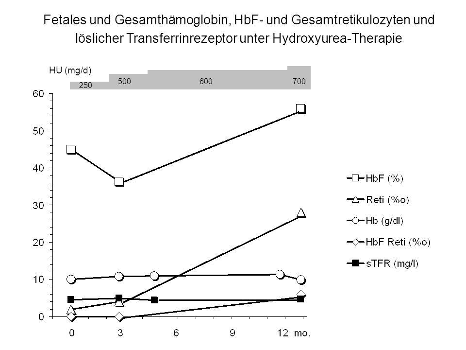 Fetales und Gesamthämoglobin, HbF- und Gesamtretikulozyten und löslicher Transferrinrezeptor unter Hydroxyurea-Therapie