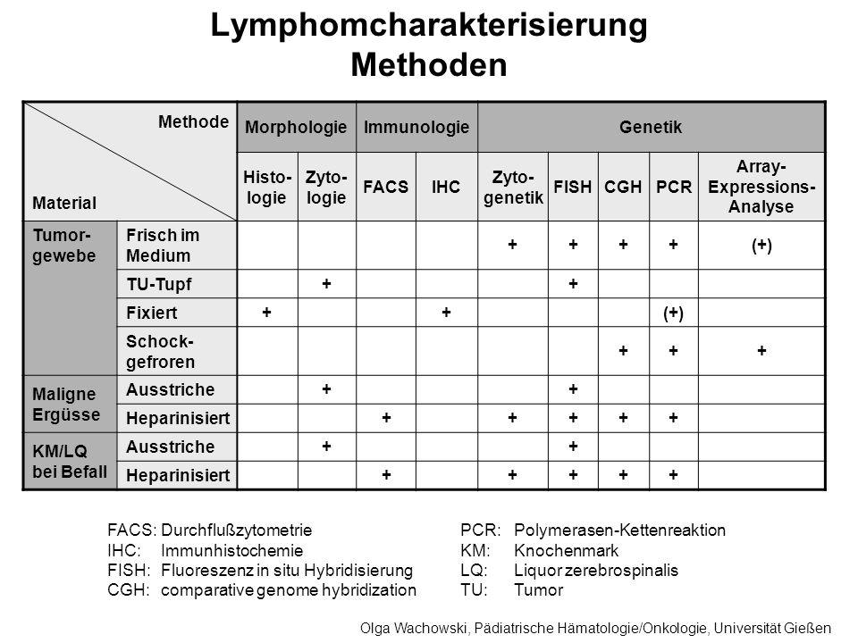 Lymphomcharakterisierung Methoden