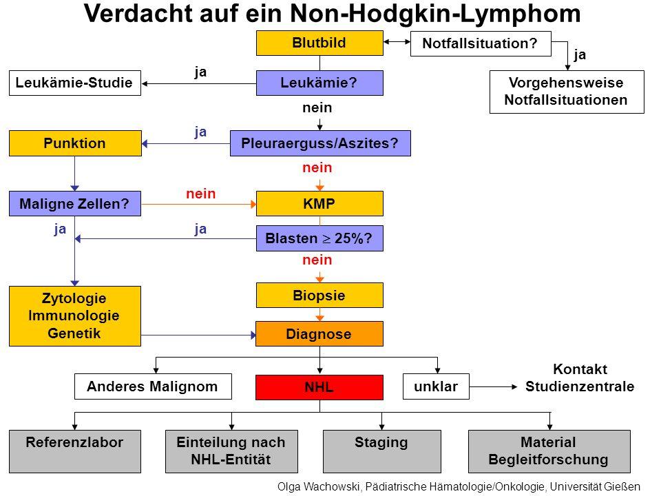Verdacht auf ein Non-Hodgkin-Lymphom