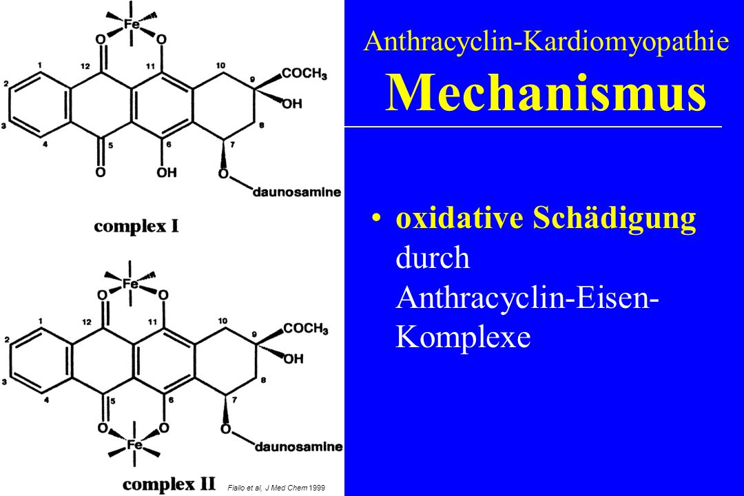 Anthracyclin-Kardiomyopathie Mechanismus