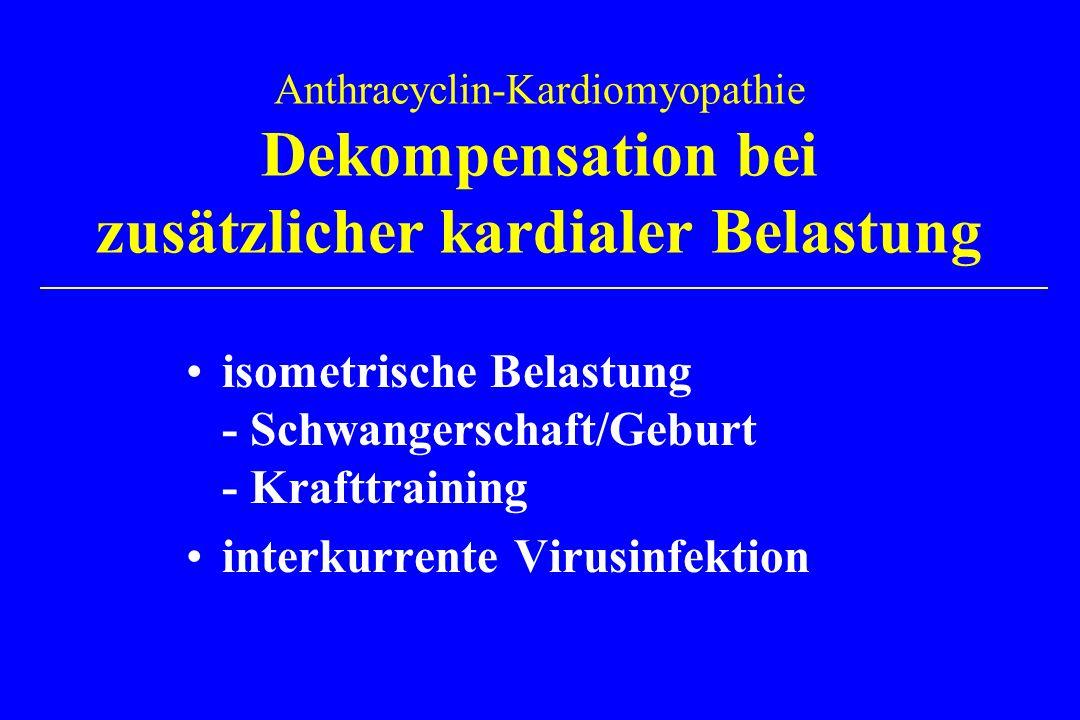 isometrische Belastung - Schwangerschaft/Geburt - Krafttraining