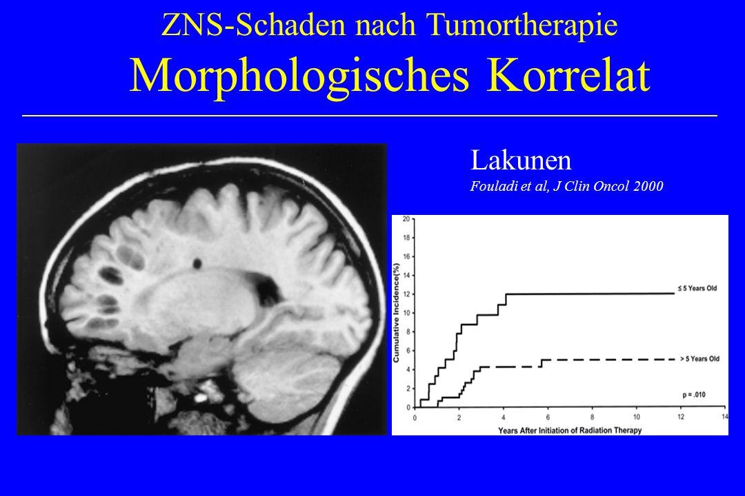 Morphologisches Korrelat