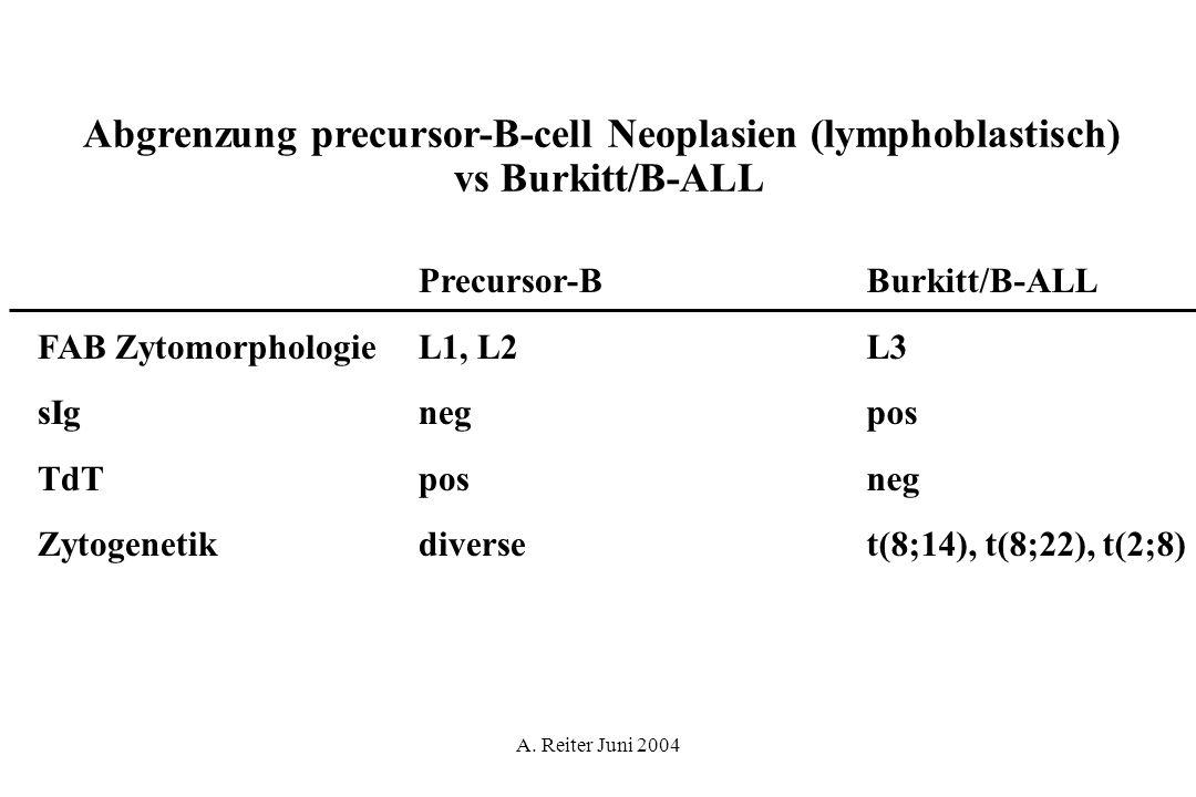 Abgrenzung precursor-B-cell Neoplasien (lymphoblastisch)