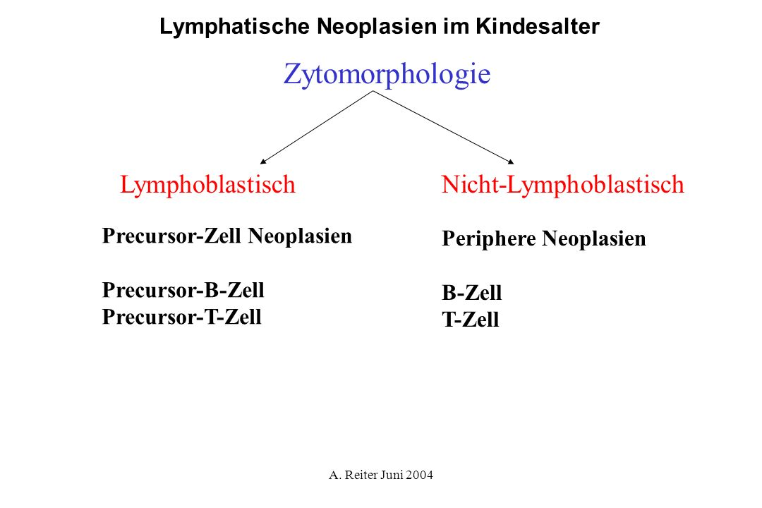 Zytomorphologie Lymphoblastisch Nicht-Lymphoblastisch
