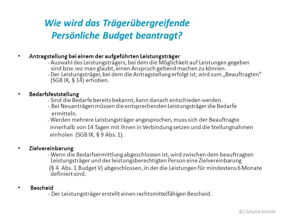 Wie wird das Trägerübergreifende Persönliche Budget beantragt