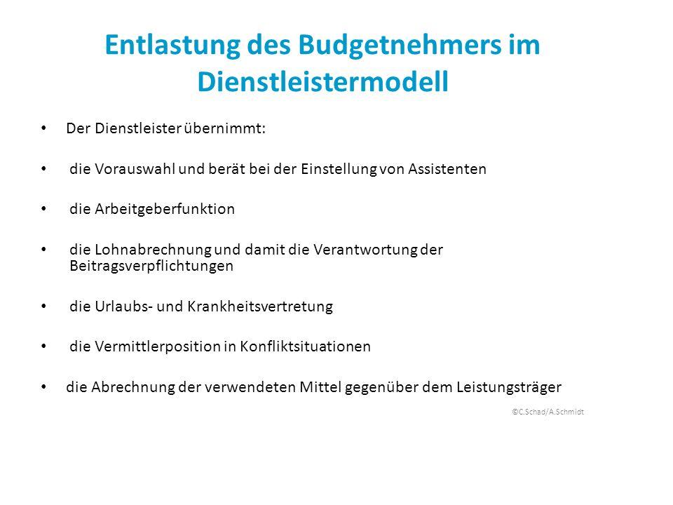 Entlastung des Budgetnehmers im Dienstleistermodell