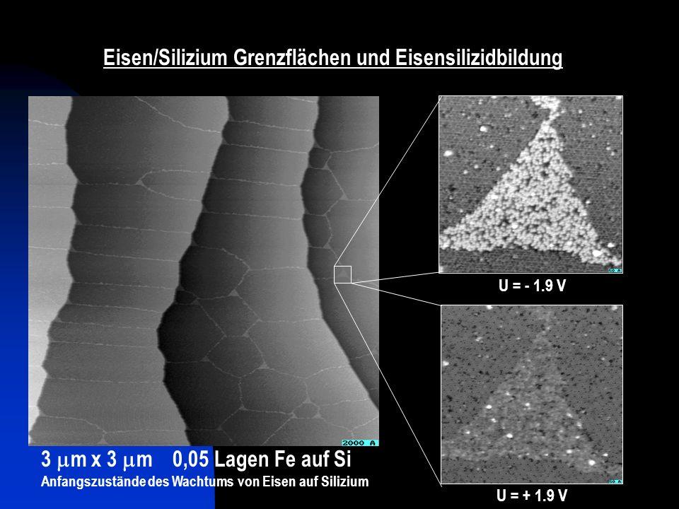 Eisen/Silizium Grenzflächen und Eisensilizidbildung