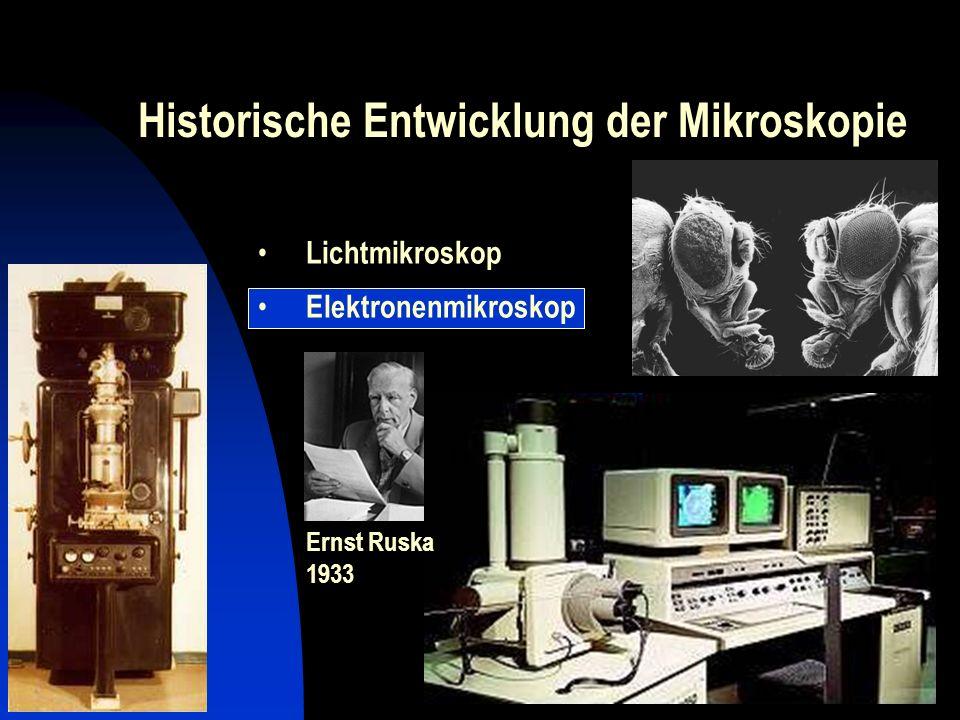 Historische Entwicklung der Mikroskopie