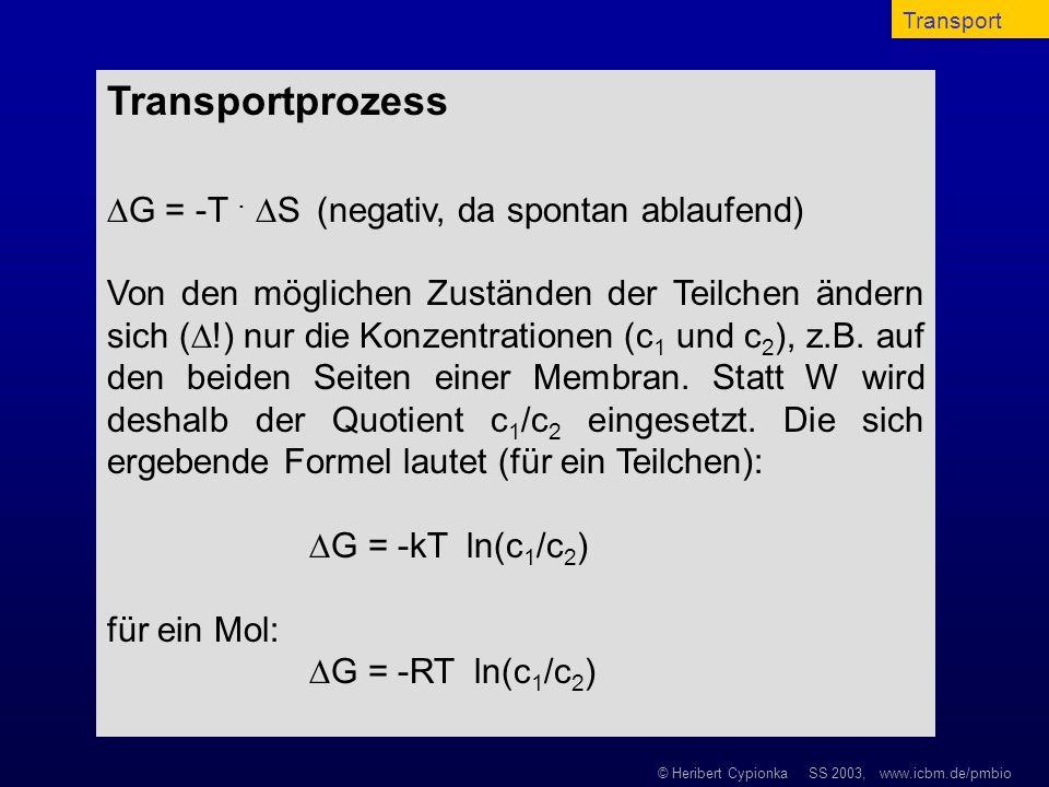 Transportprozess G = -T . S (negativ, da spontan ablaufend)