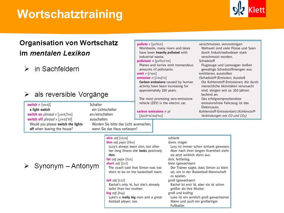 Wortschatztraining Organisation von Wortschatz im mentalen Lexikon