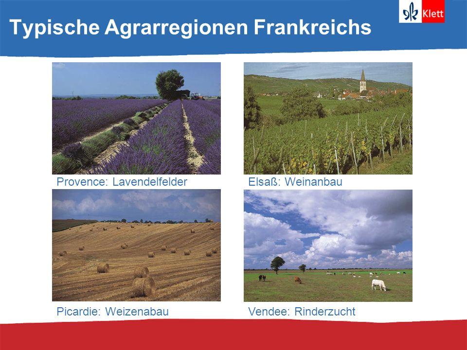 Typische Agrarregionen Frankreichs