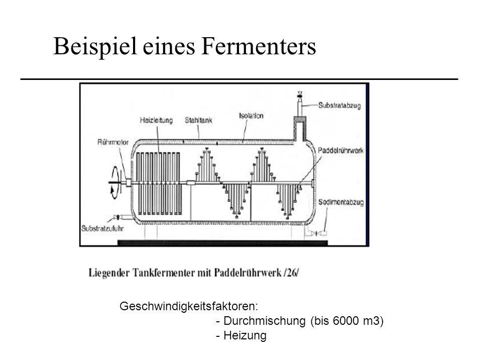 Beispiel eines Fermenters