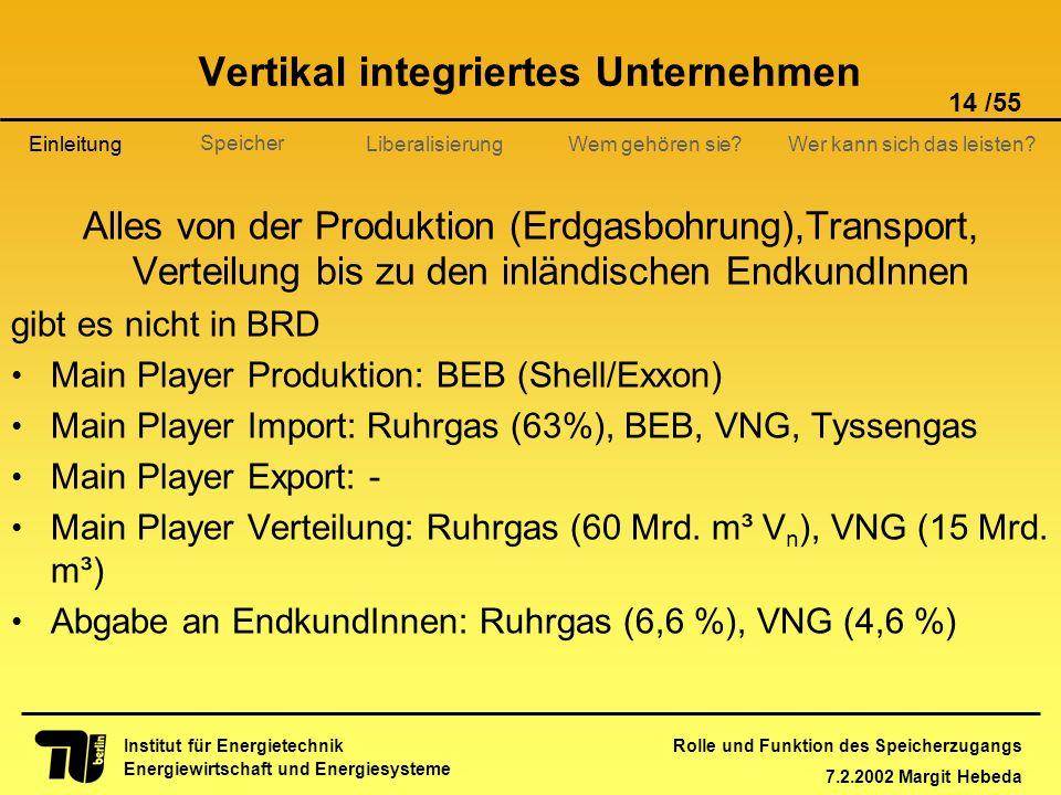 Vertikal integriertes Unternehmen