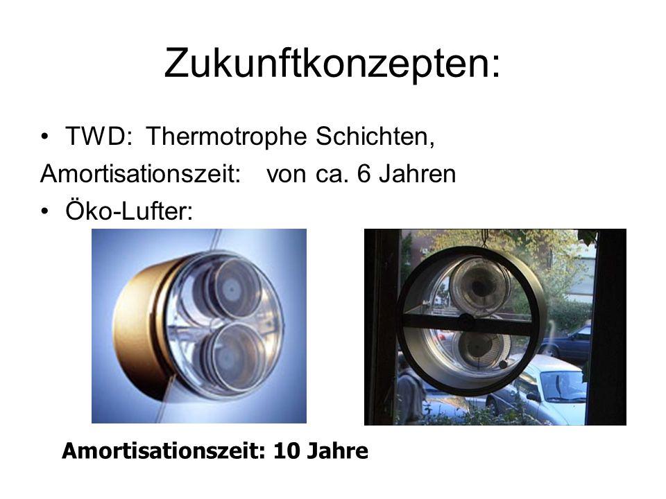 Zukunftkonzepten: TWD: Thermotrophe Schichten,