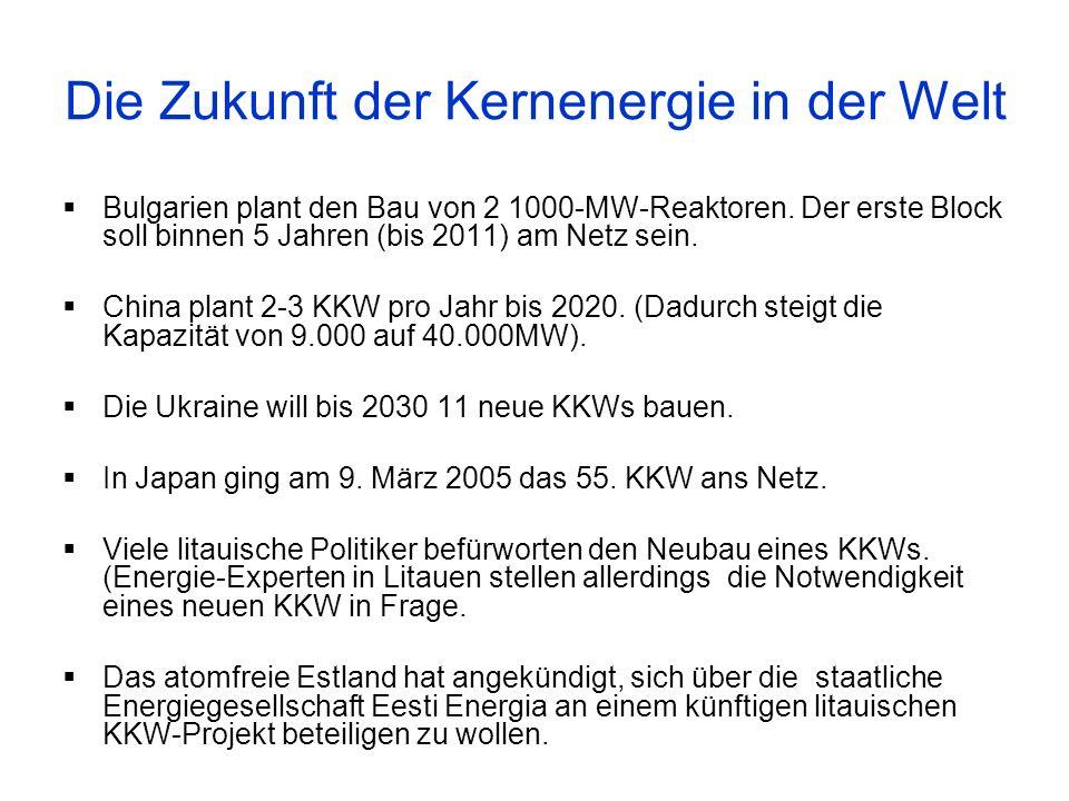 Die Zukunft der Kernenergie in der Welt