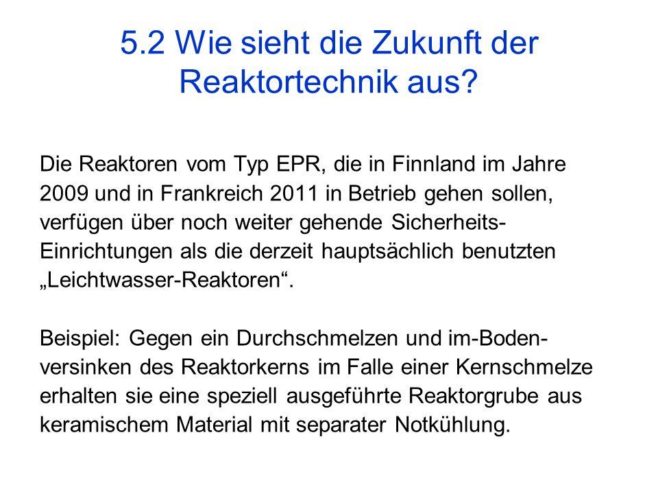 5.2 Wie sieht die Zukunft der Reaktortechnik aus