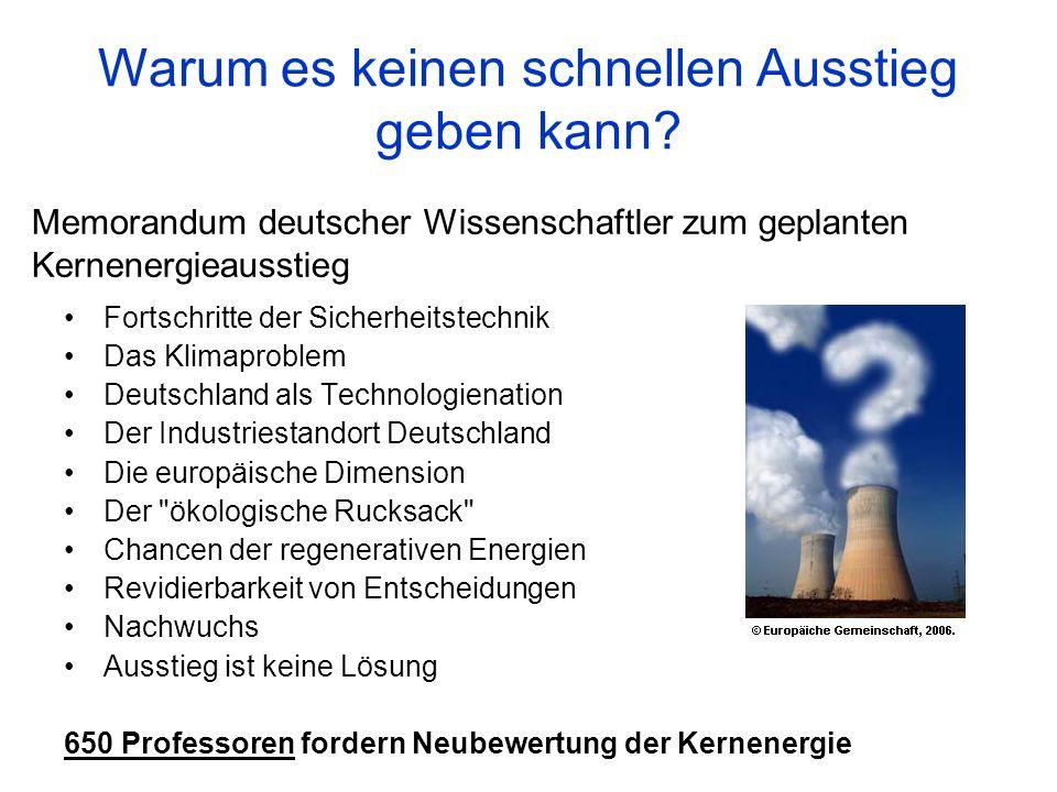 Memorandum deutscher Wissenschaftler zum geplanten Kernenergieausstieg