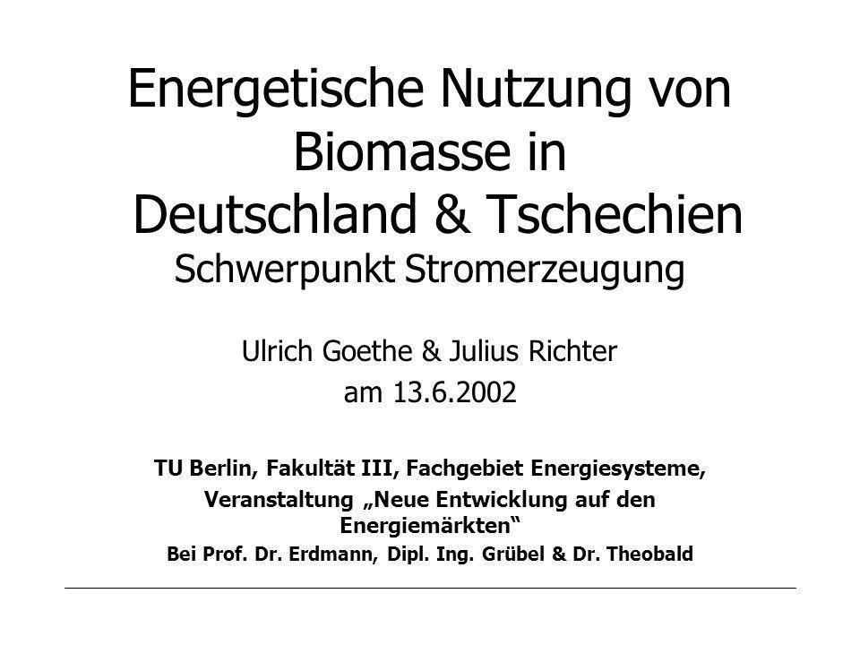 Ulrich Goethe & Julius Richter