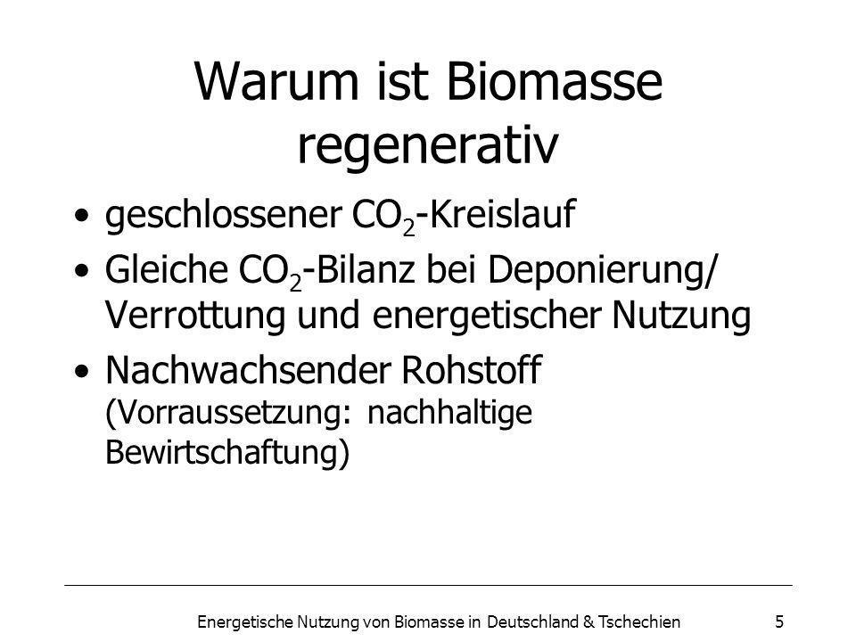 Warum ist Biomasse regenerativ