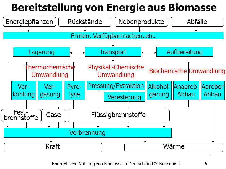 Bereitstellung von Energie aus Biomasse