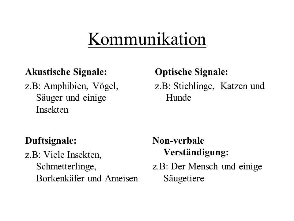 Kommunikation Akustische Signale: