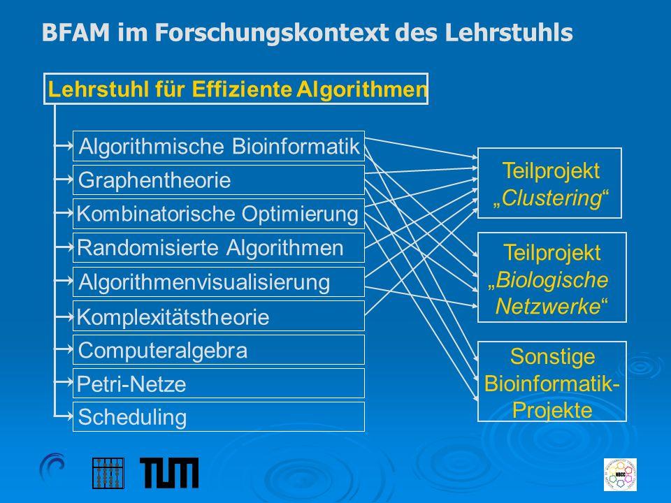 BFAM im Forschungskontext des Lehrstuhls