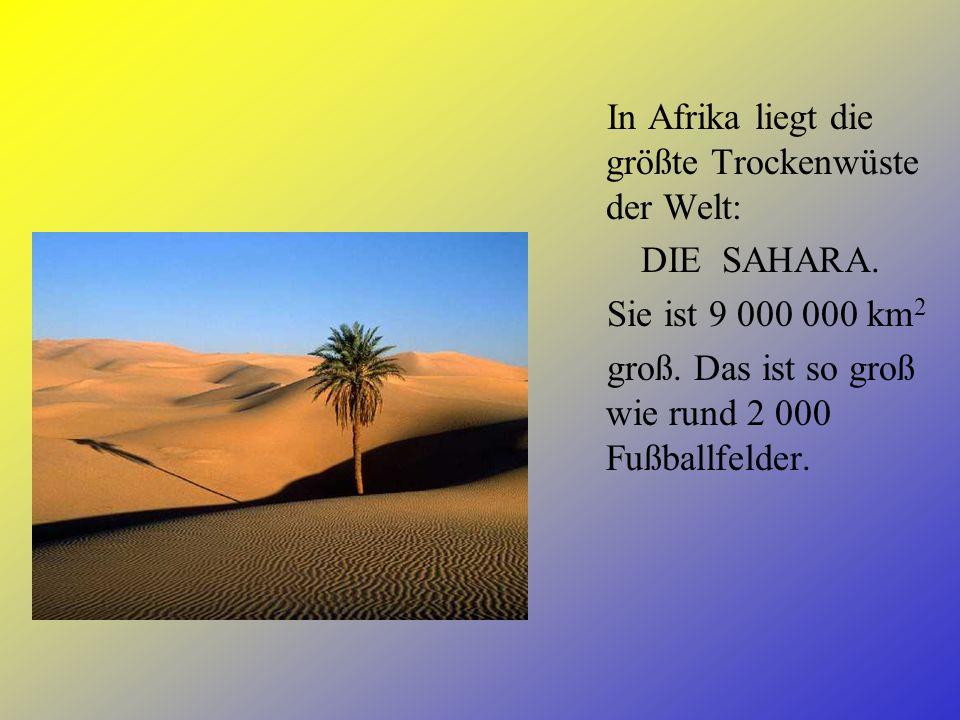 In Afrika liegt die größte Trockenwüste der Welt:
