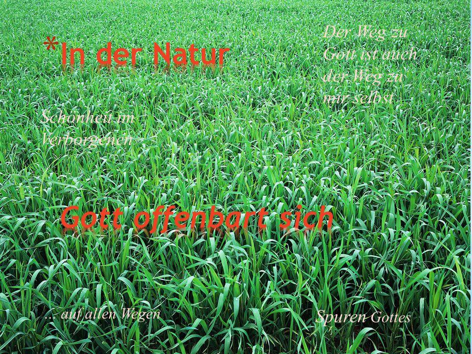 In der Natur Gott offenbart sich