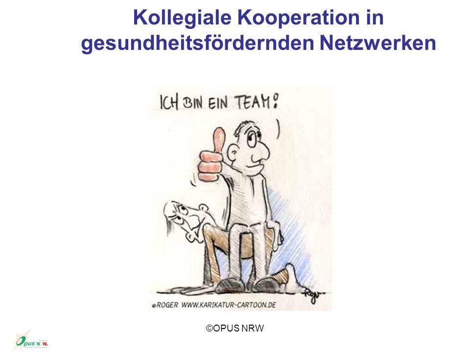 Kollegiale Kooperation in gesundheitsfördernden Netzwerken