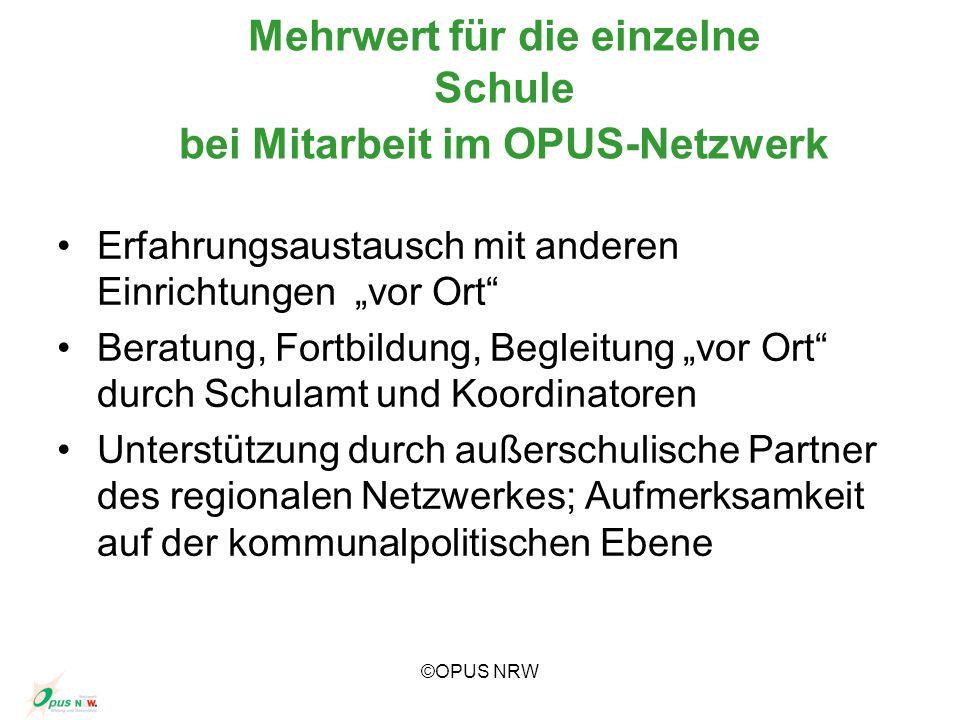 Mehrwert für die einzelne Schule bei Mitarbeit im OPUS-Netzwerk
