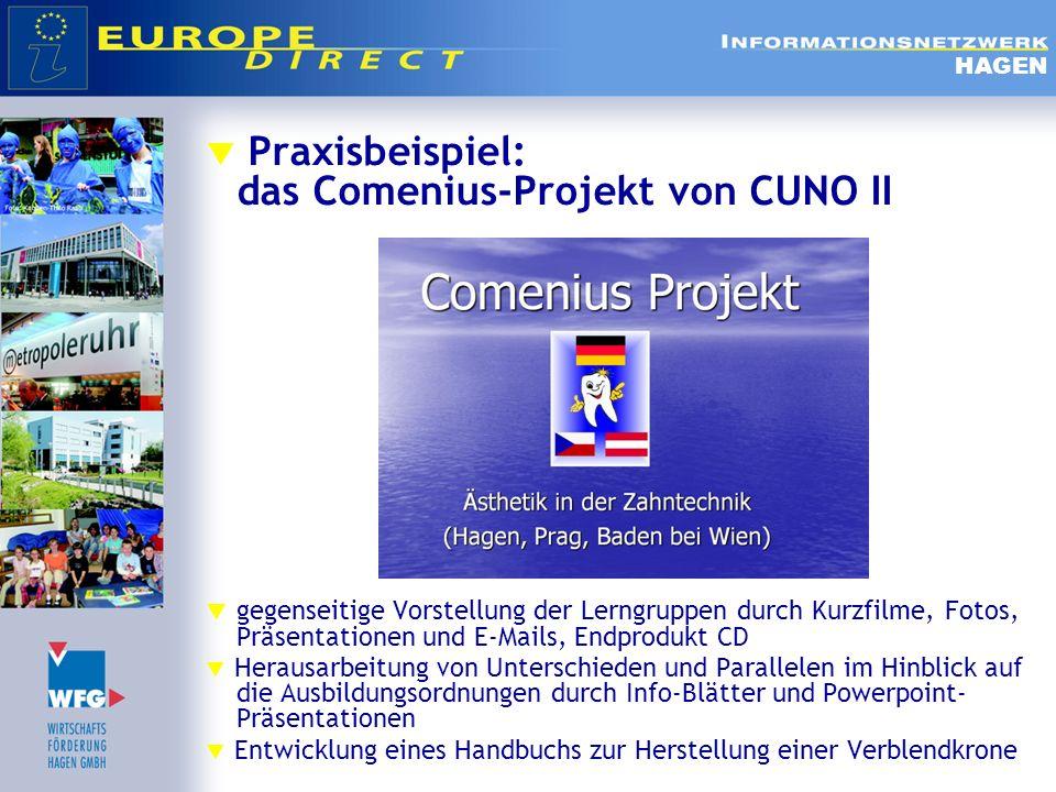 Praxisbeispiel: das Comenius-Projekt von CUNO II
