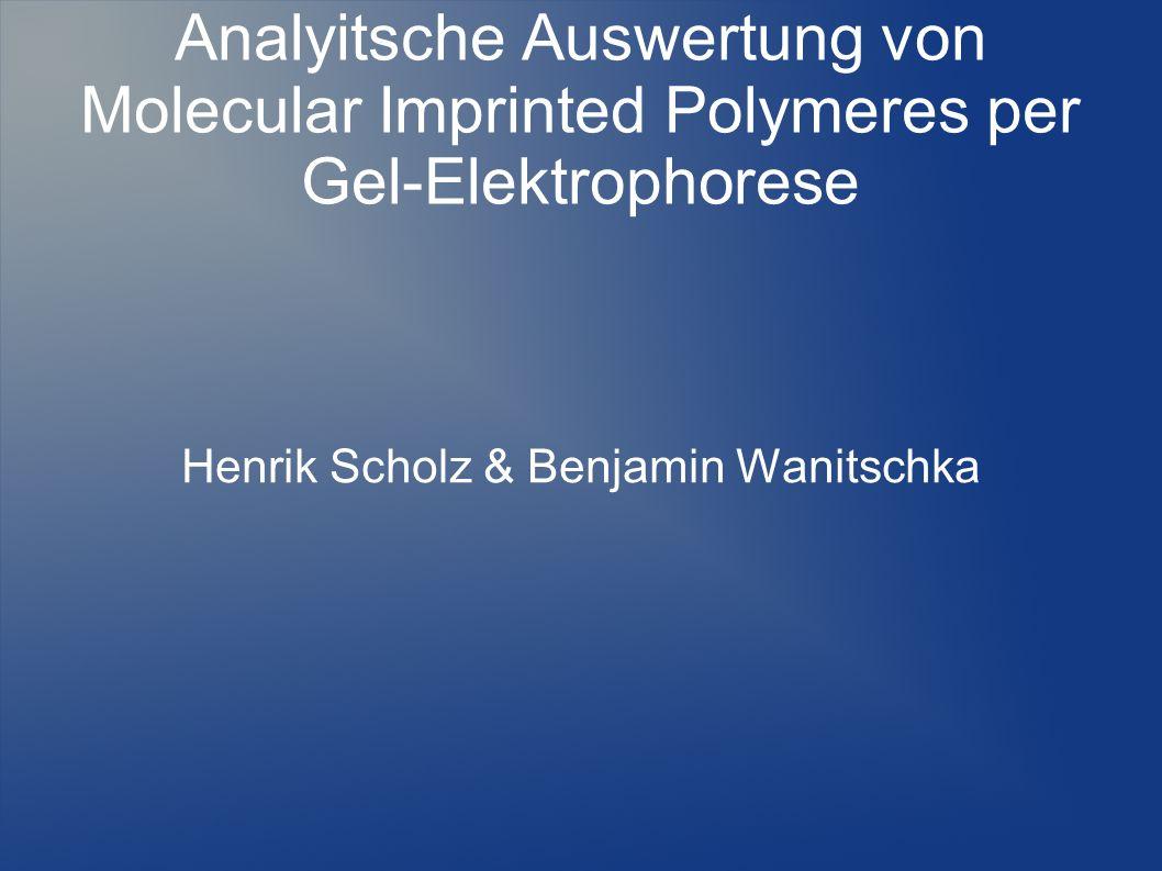 Henrik Scholz & Benjamin Wanitschka