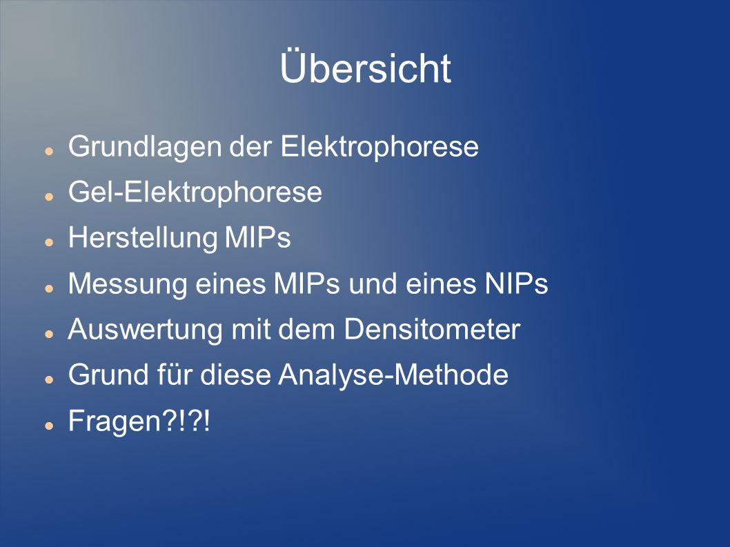 Übersicht Grundlagen der Elektrophorese Gel-Elektrophorese