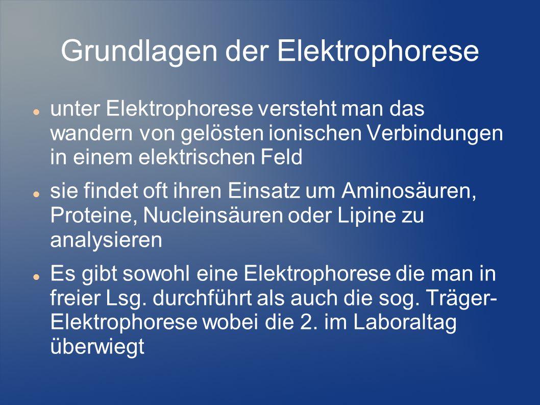Grundlagen der Elektrophorese
