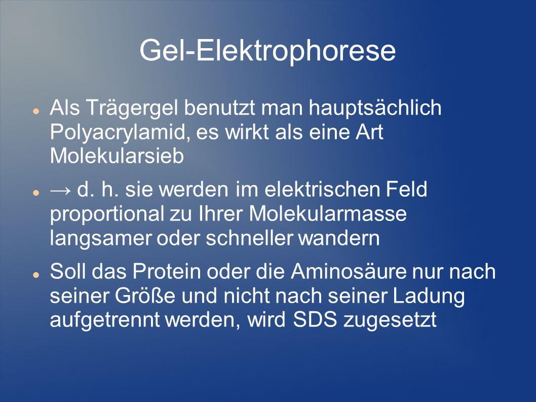 Gel-Elektrophorese Als Trägergel benutzt man hauptsächlich Polyacrylamid, es wirkt als eine Art Molekularsieb.
