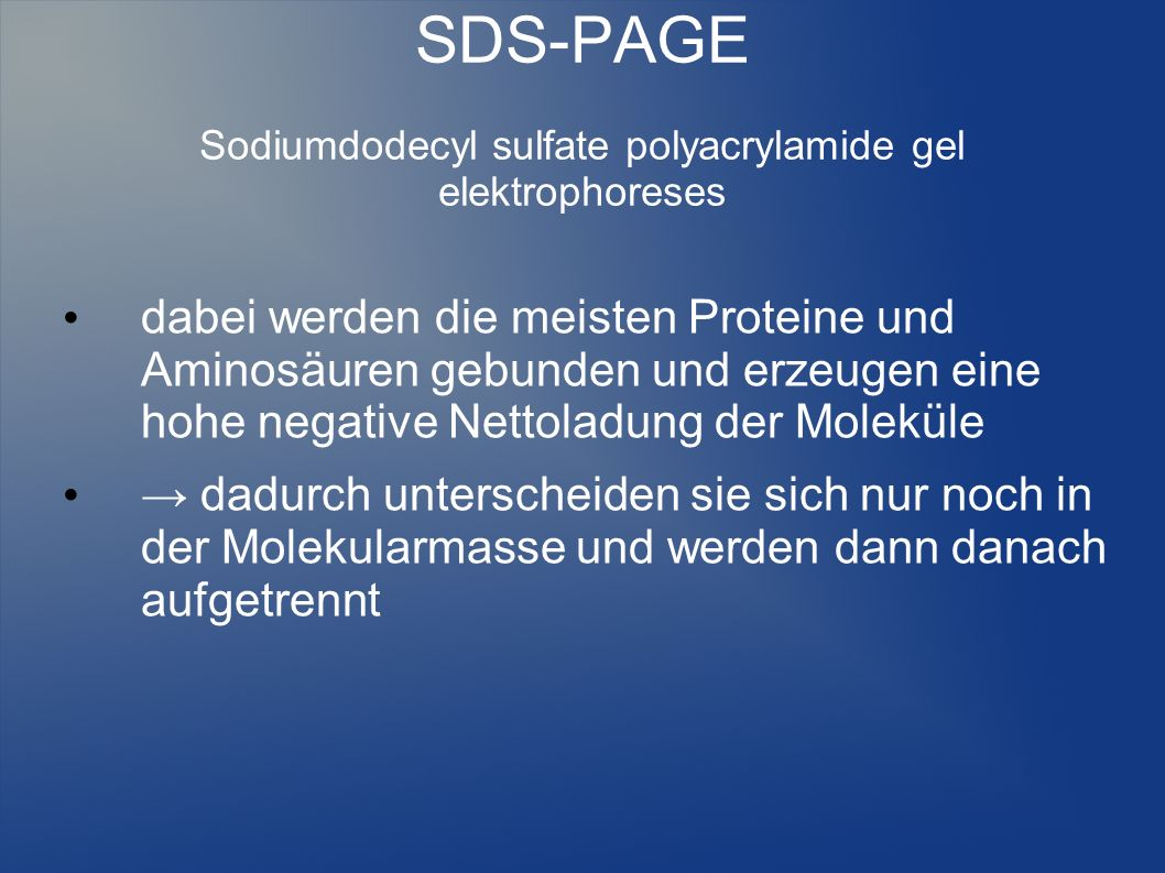 SDS-PAGE Sodiumdodecyl sulfate polyacrylamide gel elektrophoreses