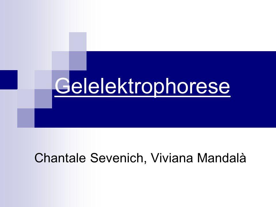 Chantale Sevenich, Viviana Mandalà