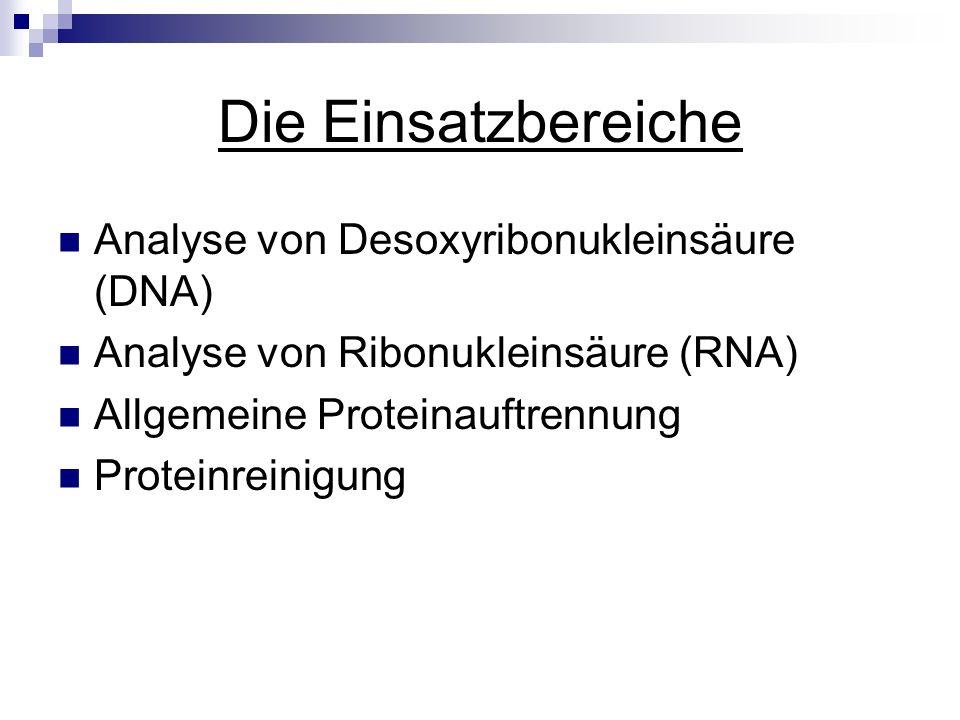 Die Einsatzbereiche Analyse von Desoxyribonukleinsäure (DNA)