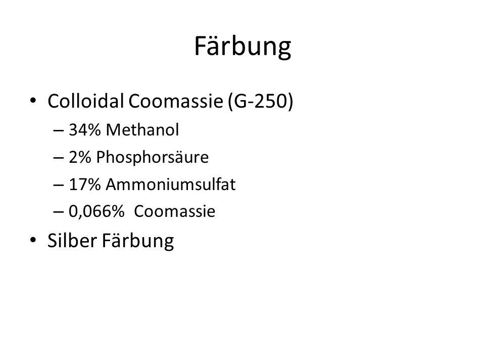 Färbung Colloidal Coomassie (G-250) Silber Färbung 34% Methanol