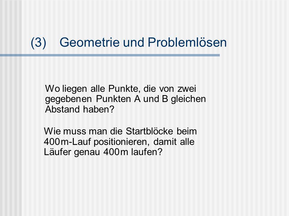 (3) Geometrie und Problemlösen