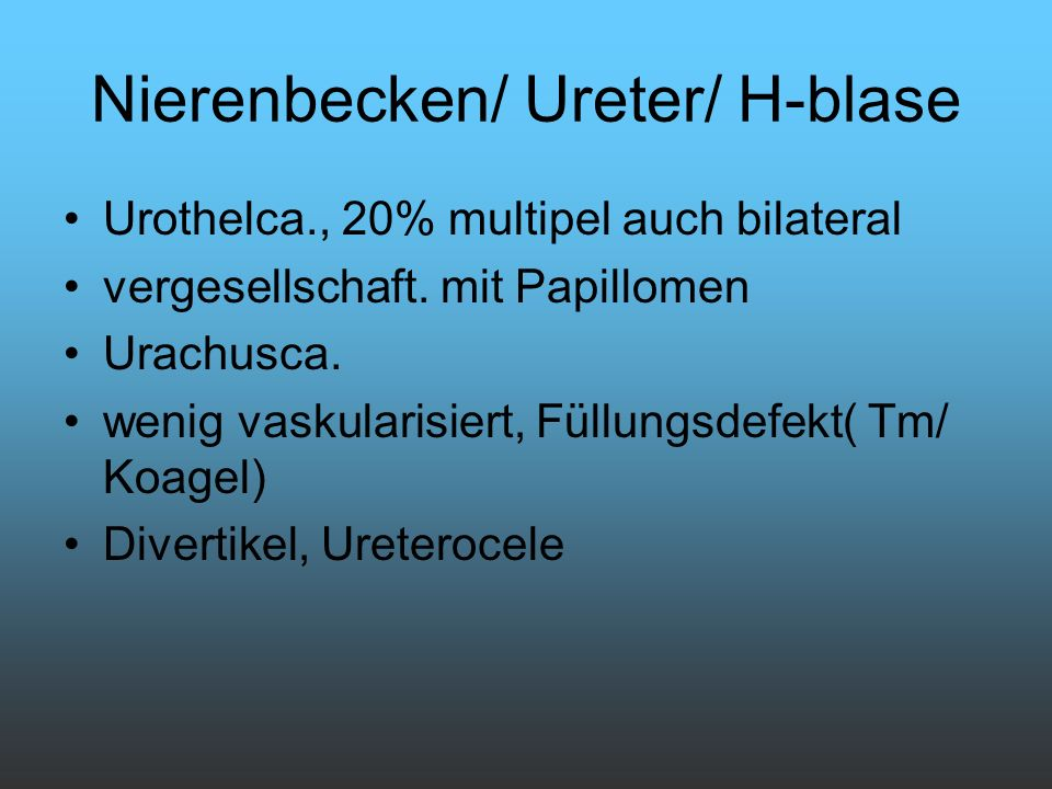 Nierenbecken/ Ureter/ H-blase
