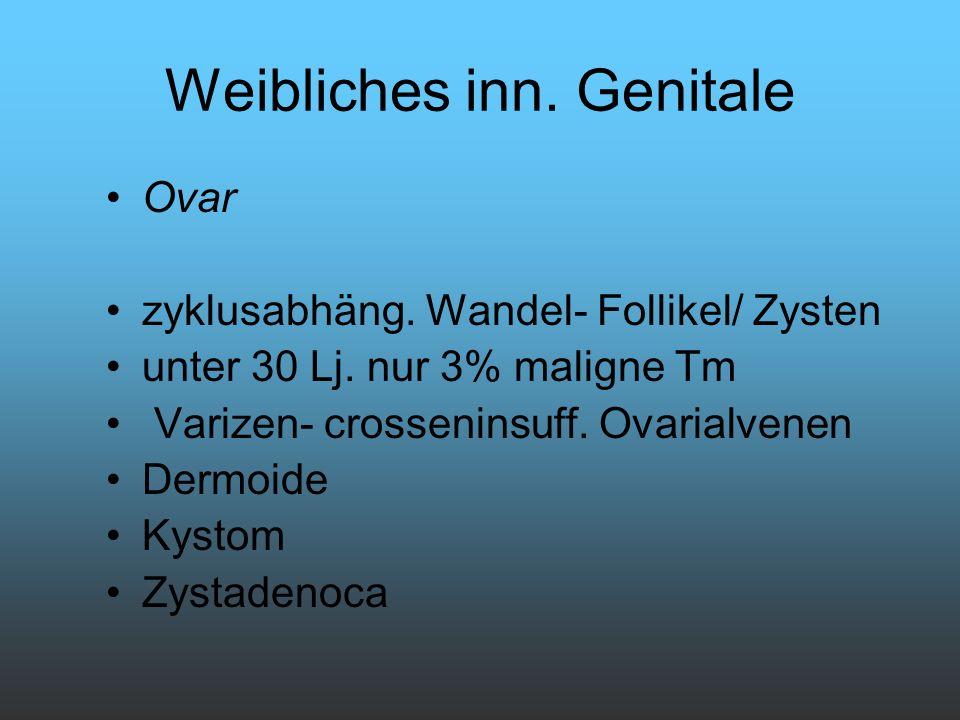 Weibliches inn. Genitale