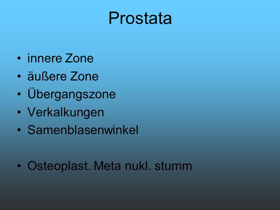 Prostata innere Zone äußere Zone Übergangszone Verkalkungen